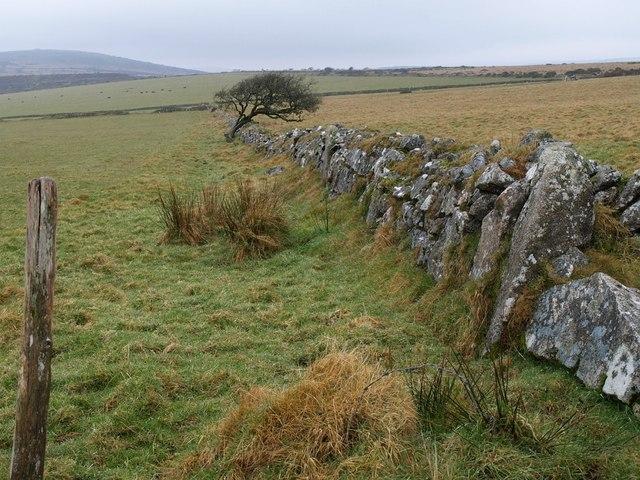 Wall, Draynes Common