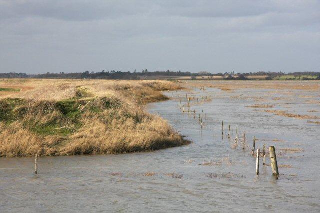Bank of River Deben at high water