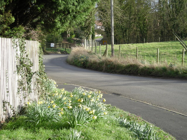 Lane through Wroxeter.