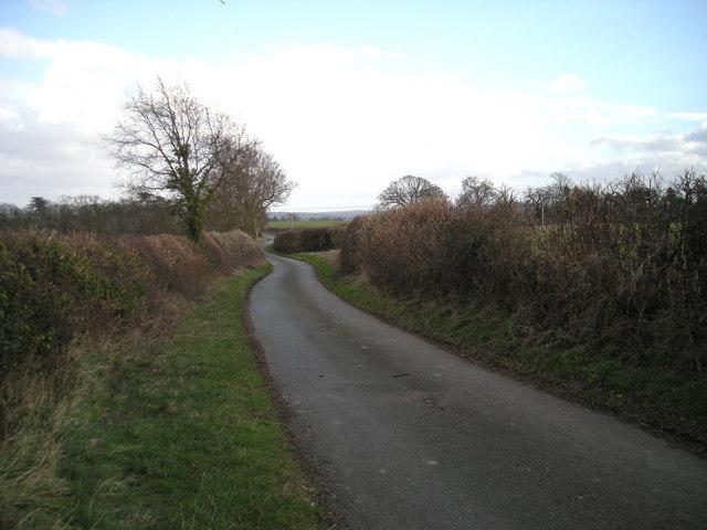 A quiet lane.