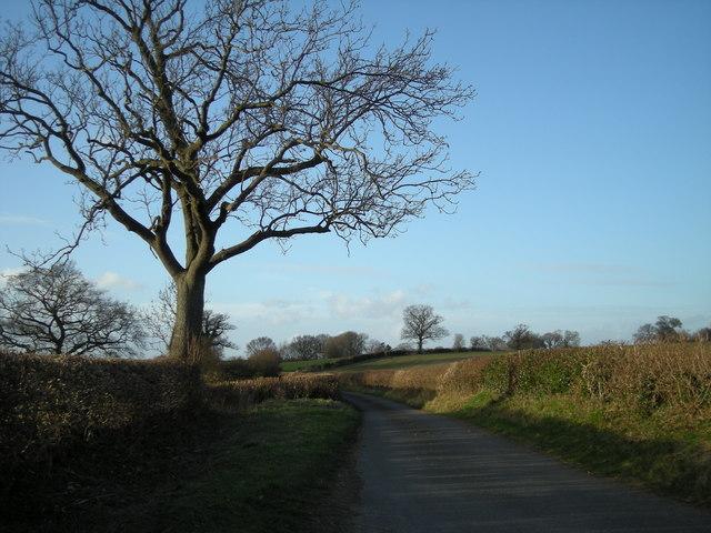 Lane between Berrington & Eaton Mascott.