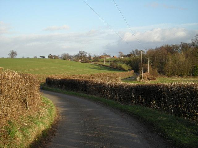 Down the lane to Eaton Mascott.