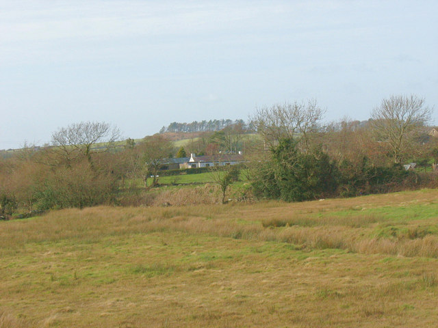View across rough grazing towards Perthi Cottage