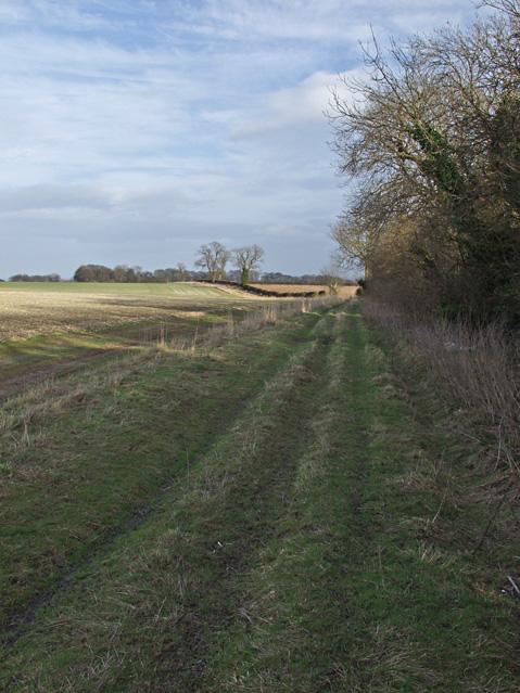 Riplingham farm track