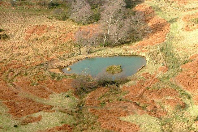Fairly New Pond, Rabbit Warren