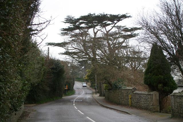 Grove Hill Mawnan Smith