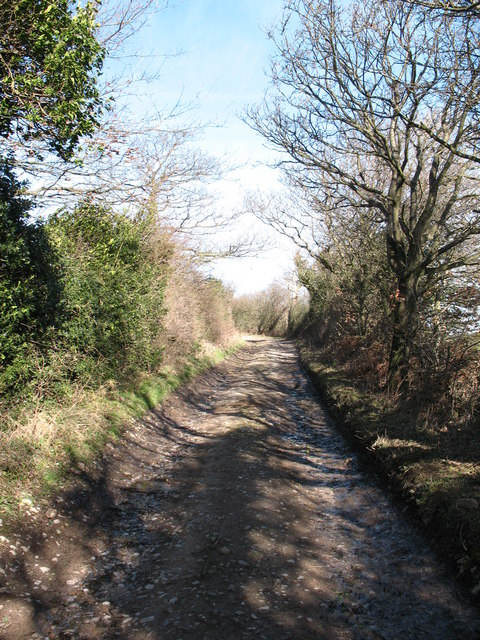 Lane to Gillmoor