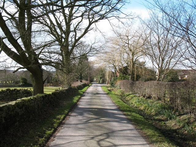 Lane at High Hollins