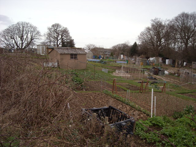 Watermill Lane Allotments, Sidley