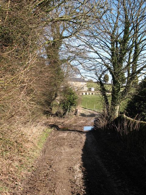 Track to Low Farm