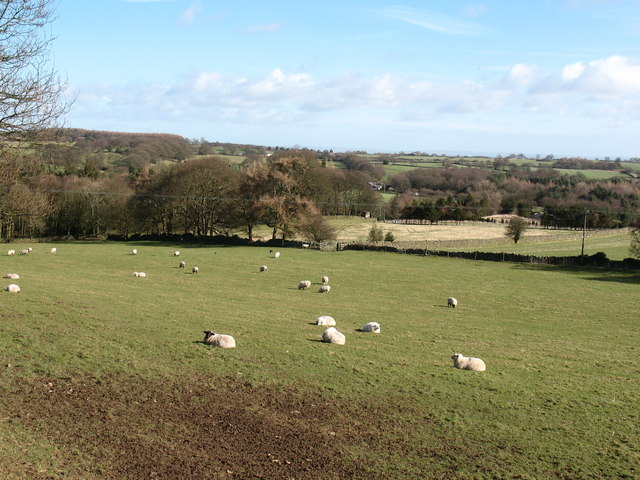 Farmland at Brimham