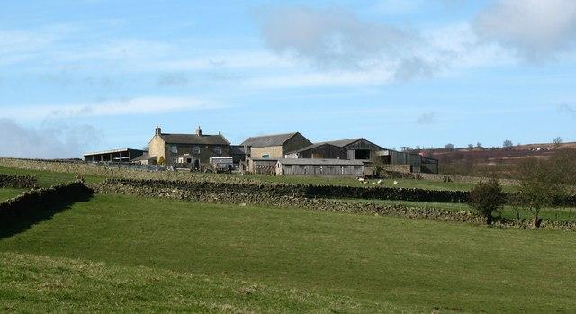 Riva Hill Farm