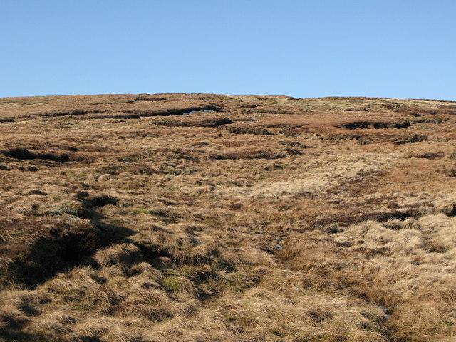 Moorland east of Chapelfell Top (3)
