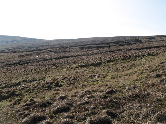 Swinhope Moor below Chapelfell Top