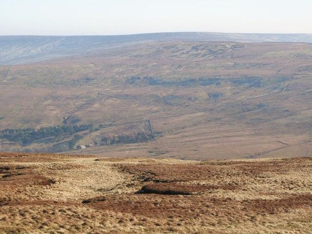 Swinhope Moor (3)