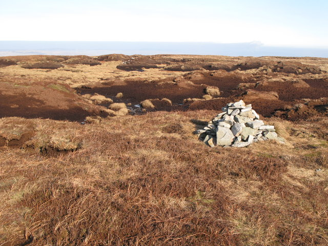 Currick on Chapelfell Top (2)