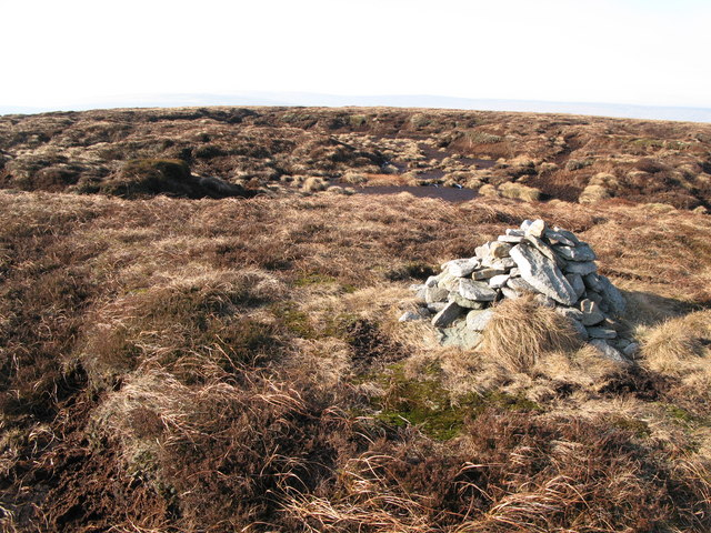 Currick on Chapelfell Top (3)