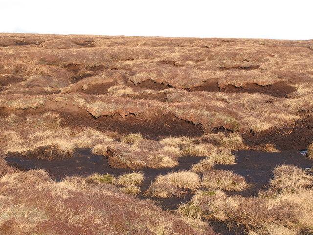 Peat haggs on Chapelfell Top (8)