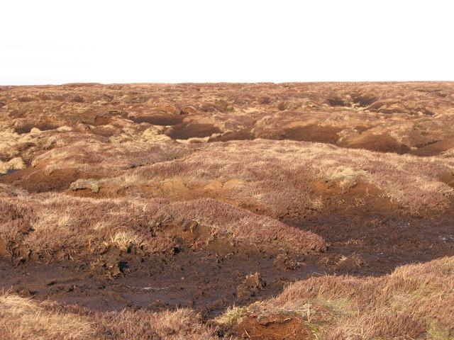Peat haggs on Chapelfell Top (9)