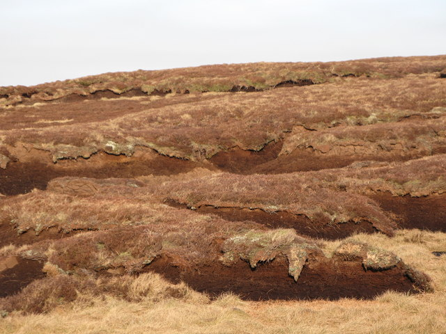 Peat haggs on Harthope Moss (2)