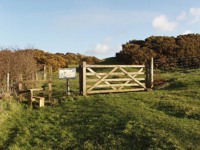 Field gate into Warbstow Bury