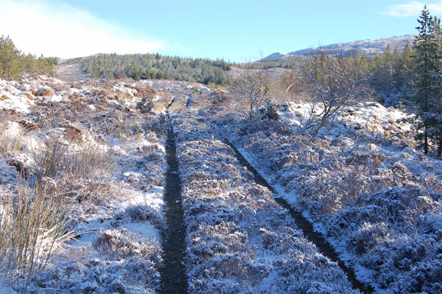 Track above Kinloch