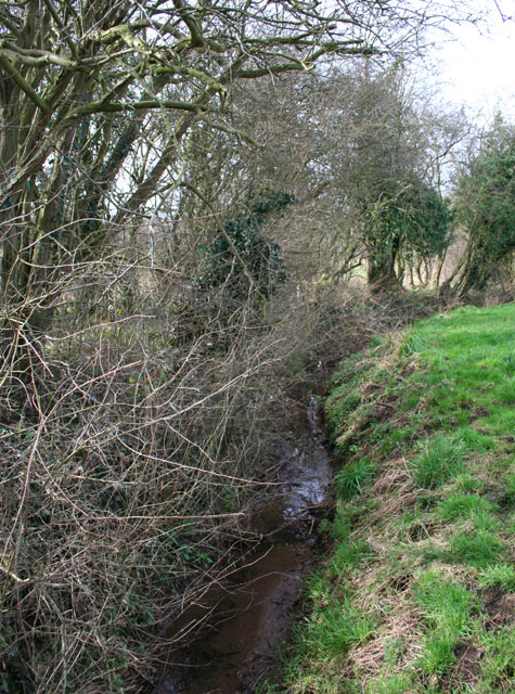 Tributary of River Weaver at field boundary
