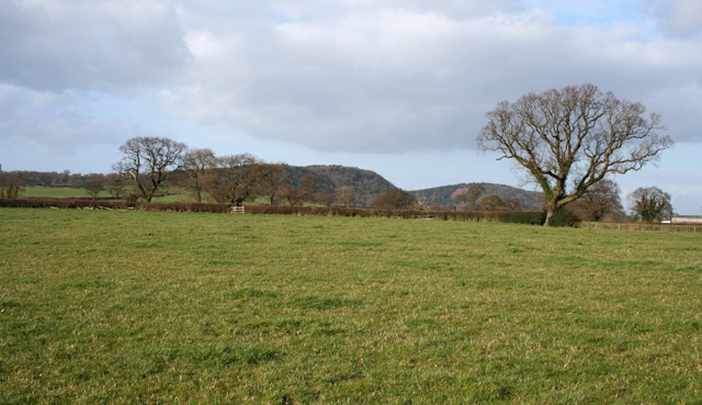 View towards Peckforton Hills