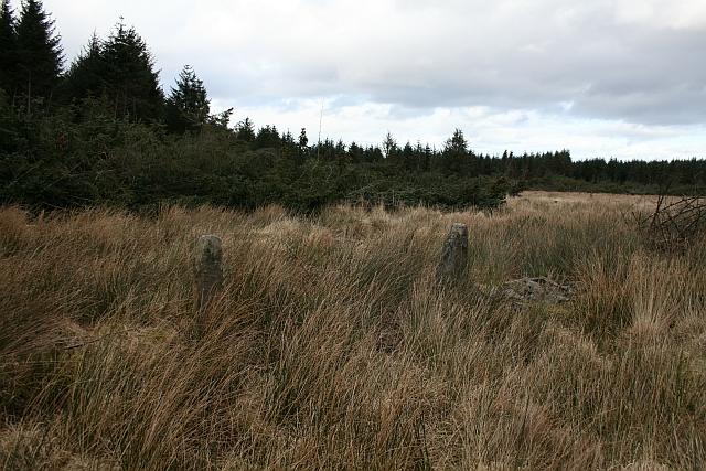 Stone Gateposts in Cropton Forest