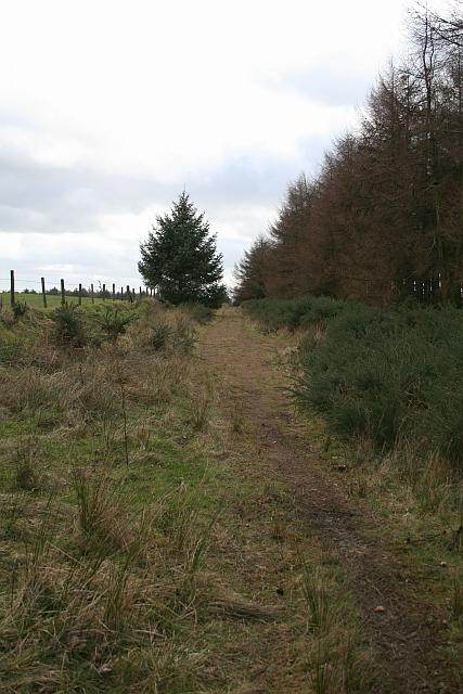 Track at Brown Howe