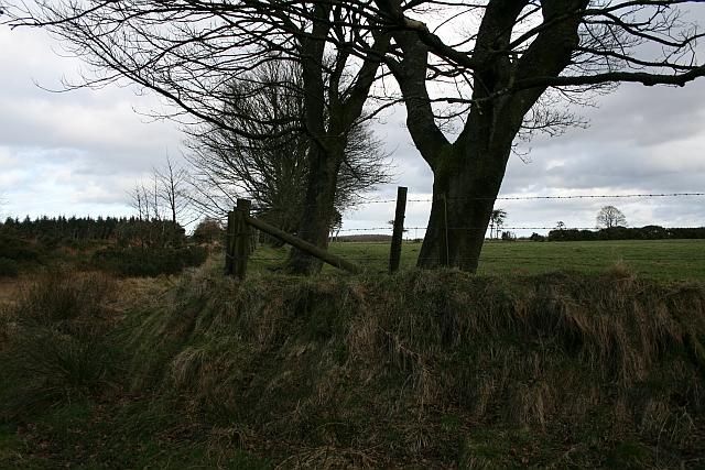 Field Corner at Brown Howe