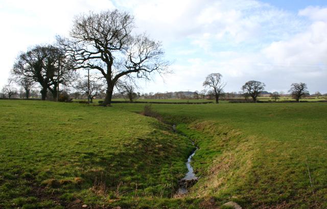 Brook near Bulkelehay