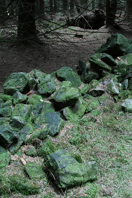 Ruined Drystone Wall on Esp Rigg (3)