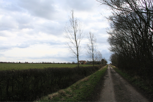 Track from Cottage farm looking south towards Priory Farm