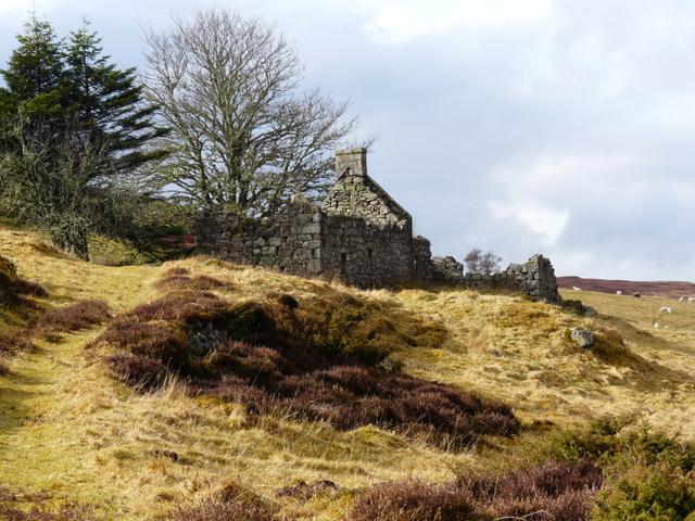 Abandoned croft, Little Rogart