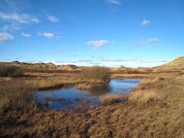 Lochan on the Sands of Forvie