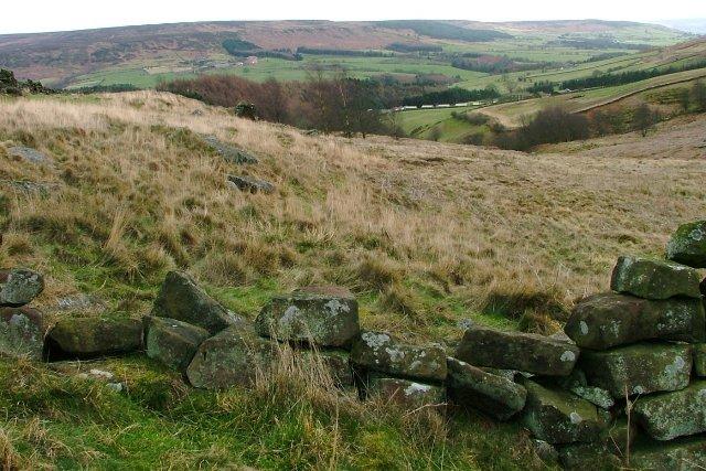 Stone Wall, South of Garfit Gap