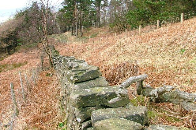 Wall, Broughton Bank