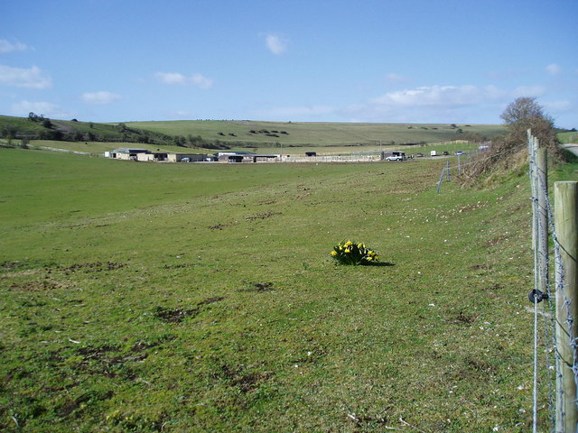 Slonk Hill Riding Stables