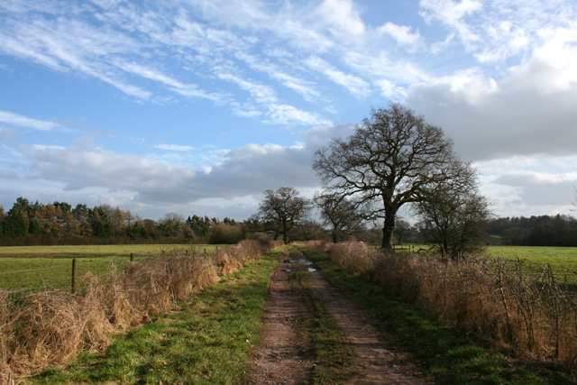 Cholmondeley Estate Track south of Bulkelehay