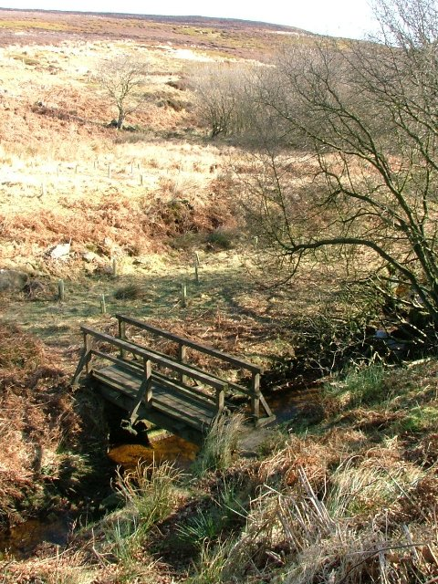 Footbridge Over Whiteley Beck