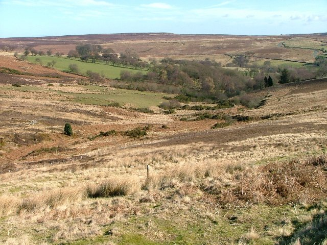 Looking Down Whiteley Beck Towards Commondale
