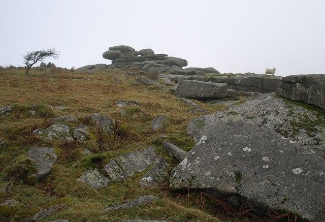 Rocks near Tregarrick Tor