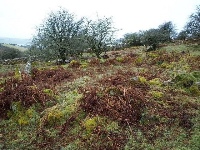 Hut circle, Craddock Moor