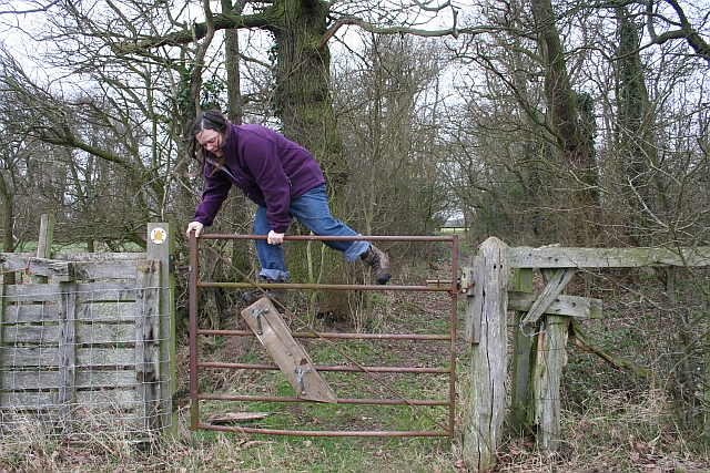 Stepped Gate Stile