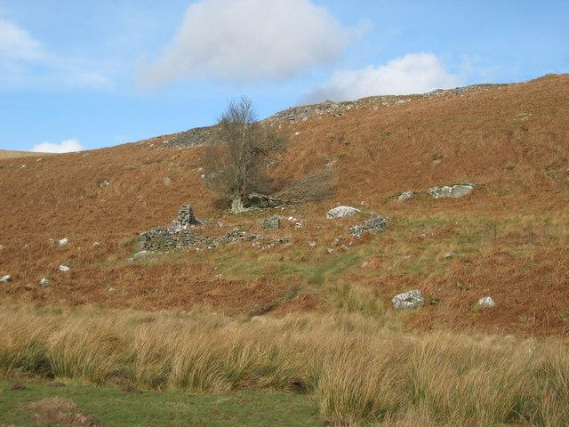 Ruin near Longheughshield