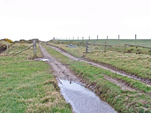 Annaside Banks on Cumbria Coastal Way