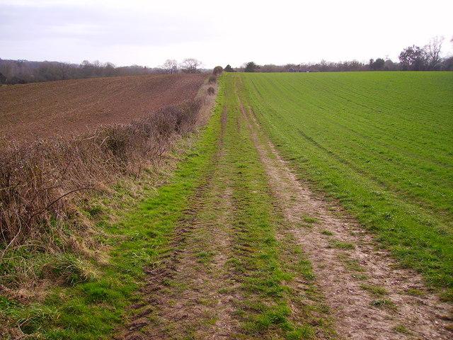 Longstock - Track