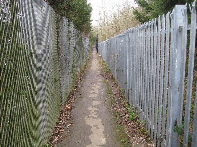 Crews Hill: Beech Avenue footpath