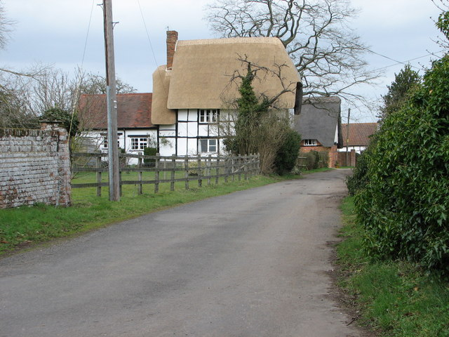 Newly thatched